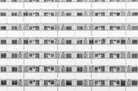 stier-und-bergen_seo-texte_05